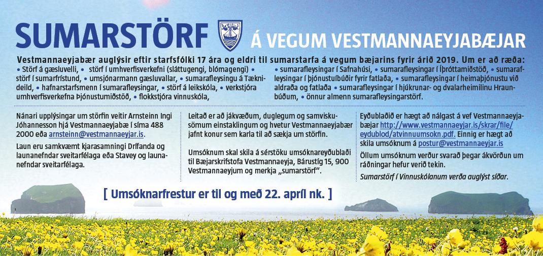 VEY: Sumarstörf