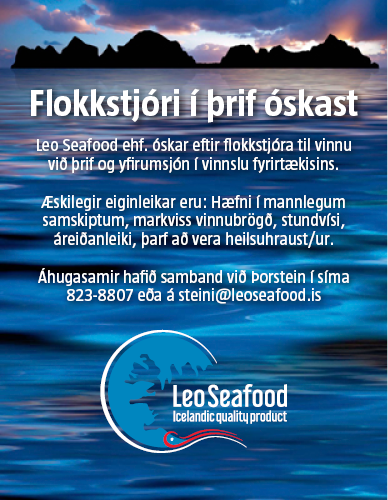 LEO – Flokkstjóri/Þrif