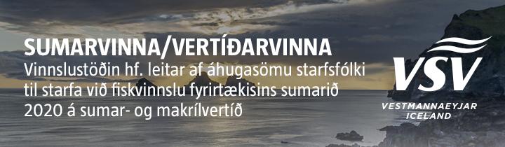 vsv-sumarvinna2020