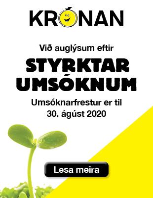 Krónan – Styrkir 2020