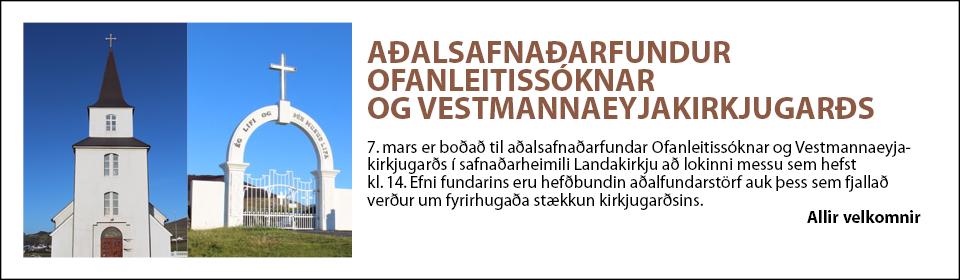 Aðalfundur