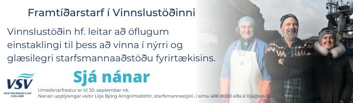 Framtíðarstarf í Vinnslustöðinni